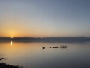 See, Meer, Fisch, Starnberger See